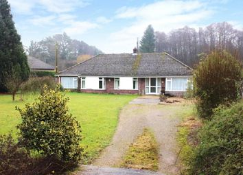 Thumbnail 4 bed detached bungalow to rent in Swaffham Road, Mundford, Thetford