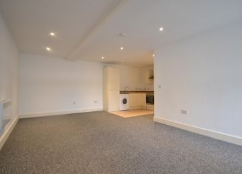 Thumbnail 2 bed flat to rent in Storrington, West Sussex
