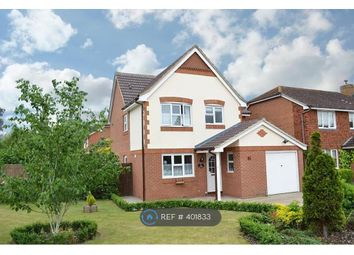 Thumbnail 4 bed detached house to rent in Sanger Drive, Woking