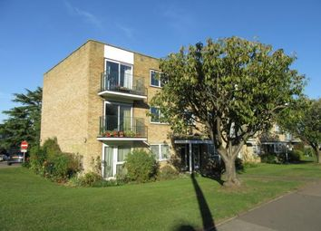 Thumbnail 2 bed flat to rent in Stevenage Road, Hitchin