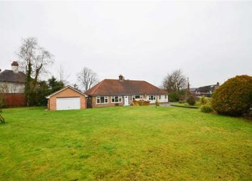 Thumbnail 5 bed bungalow to rent in Grammar School Road, Lymm, Cheshire