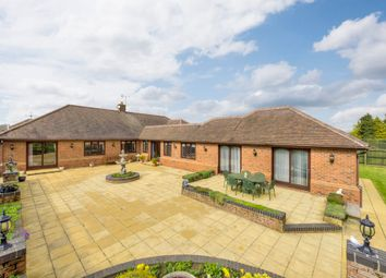 Thumbnail 4 bed detached bungalow for sale in Norton, Bury St Edmunds, Suffolk