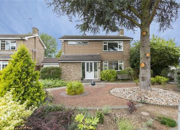 Thumbnail 4 bed detached house for sale in The Spinney, Orsett, Grays, Essex