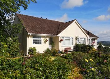 Thumbnail 2 bed semi-detached bungalow for sale in Burnards Field Road, Colyton, Devon