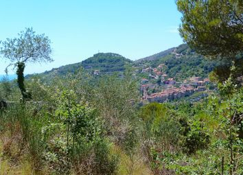 Thumbnail Land for sale in South-West Facing Plot Of Land With Planning Permission - Bo 480, Via Madonna Della Neve - Bo 480, Italy