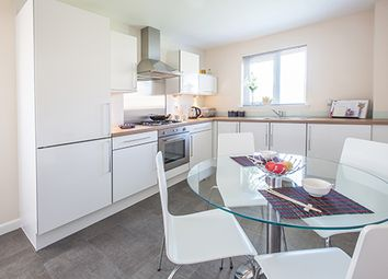 "Thumbnail 4 bed detached house for sale in ""Glenmore"" at Old Lang Stracht, Kingswells, Aberdeen"