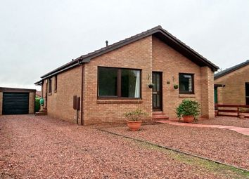 Thumbnail 3 bedroom bungalow to rent in Smithfield Crescent, Blairgowrie