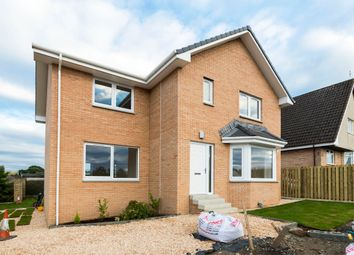 Thumbnail 4 bed detached house for sale in Chestnut Grove, Gartcosh, Glasgow