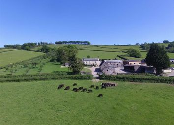 Thumbnail 18 bed farm for sale in Lewdown, Okehampton