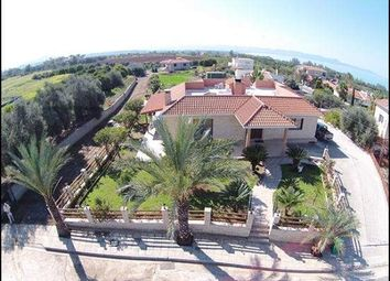 Thumbnail Bungalow for sale in Argaka, Cyprus