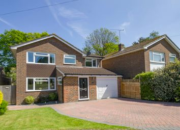 Thumbnail 4 bed detached house for sale in Ryecroft Meadow, Mannings Heath, Horsham