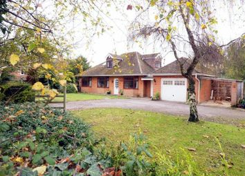 Thumbnail 4 bed detached house for sale in Butter Furlong Road, West Grimstead, Salisbury