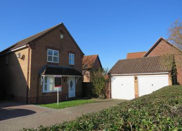 Thumbnail 4 bed detached house to rent in Bilberry Close, Attleborough