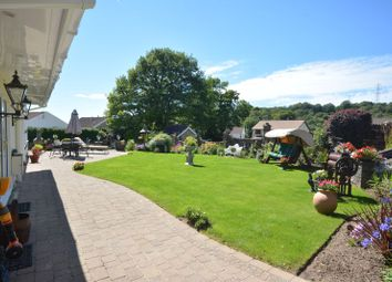 Thumbnail 4 bed detached house for sale in Pant Yr Eos, Ystradfellte Road, Neath