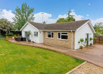 Thumbnail 3 bed detached bungalow for sale in Bramber Road, Broadwater, Worthing