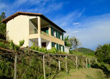 Thumbnail 3 bed country house for sale in Country House With Beautiful Views Over Apricale And The M. Alps, Perinaldo - Località Boschetto - Pe 556, Italy