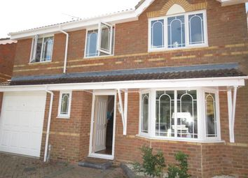 Thumbnail 4 bed detached house to rent in Shelduck Crescent, Great Notley, Braintree