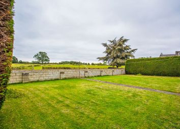 Thumbnail 2 bed bungalow to rent in Middleton Road, Bucknell, Nr. Bicester
