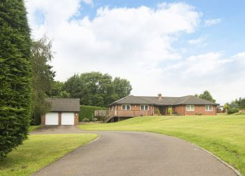 Thumbnail 4 bed detached bungalow for sale in Phocle Green, Ross-On-Wye