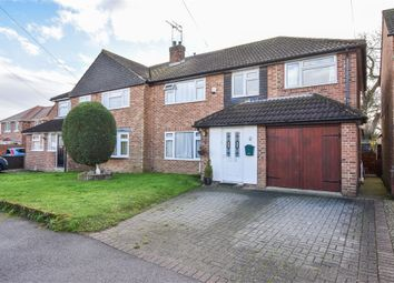 Thumbnail 4 bed semi-detached house for sale in Allendale Drive, Copford, Colchester, Essex