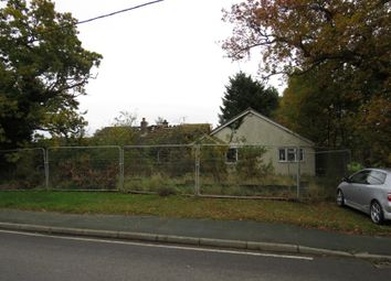 Thumbnail 5 bed bungalow for sale in The Bungalow, School Road, Great Oakley, Harwich, Essex