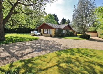 Thumbnail 4 bedroom detached bungalow for sale in Bethesda Street, Upper Basildon, Reading