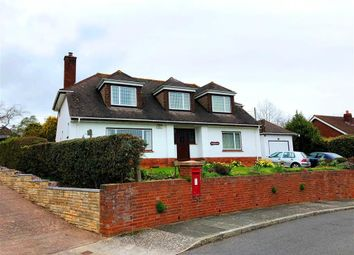Thumbnail 6 bed property to rent in Rosebank Crescent, Exeter