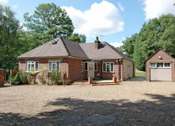 Thumbnail 6 bedroom detached bungalow to rent in Hardwick Lane, Lyne, Chertsey, Surrey