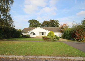 Thumbnail 3 bed detached bungalow for sale in Chestnut Springs, Swindon, Wiltshire