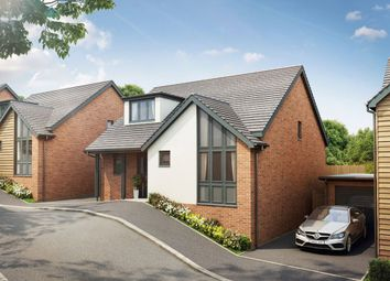 Thumbnail 3 bed detached house to rent in Rowan Drive, Seaton