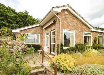 Thumbnail 3 bed bungalow for sale in The Fairway, Midhurst, West Sussex