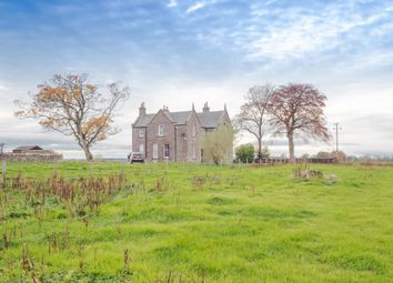 Thumbnail 5 bed detached house to rent in Brechin