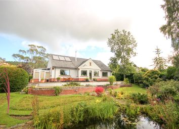 Thumbnail 3 bed detached bungalow for sale in Applegarth, Nicholson Lane, Penrith, Cumbria