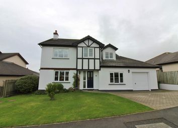 Thumbnail 4 bed detached house for sale in 29 Ballagarey Road, Glen Vine
