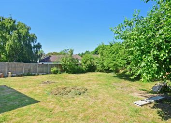 Thumbnail 4 bed semi-detached house for sale in Forest Avenue, Chigwell, Essex