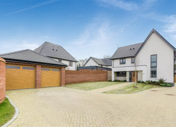 Thumbnail 4 bed detached house for sale in Abbotsbury Drive, Daventry