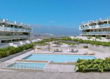 Thumbnail 1 bed apartment for sale in Las Terrazas De Sotavento, La Tejita, Tenerife, Spain