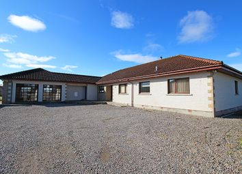 Thumbnail 4 bed detached bungalow for sale in Upper Myrtlefield, Invernesss