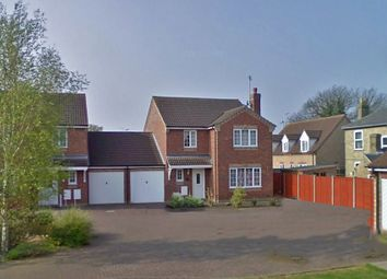 Thumbnail 4 bed link-detached house to rent in Fleet Close, Littleport, Ely