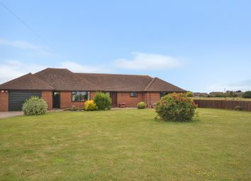 3 bed detached bungalow for sale in Dungeness Road, Lydd, Romney Marsh, Kent TN29