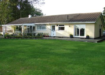 Thumbnail 3 bed detached bungalow to rent in Green Lane, Snainton
