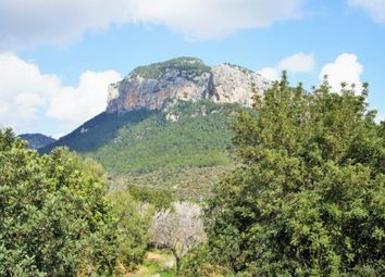 Thumbnail 8 bed country house for sale in Alaro, Mallorca, Spain