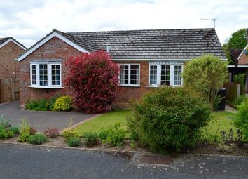 Thumbnail 3 bed bungalow to rent in Lytton Road, Taverham, Norwich