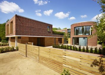 Surprising Property To Rent In Hertfordshire Renting In Hertfordshire Zoopla Largest Home Design Picture Inspirations Pitcheantrous