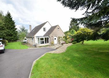 Thumbnail 4 bed detached house to rent in Hearthstone Lane, Riber, Matlock