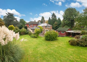 Thumbnail 4 bed semi-detached house to rent in St Nicholas, Horsham Road, Mid Holmwood, Dorking
