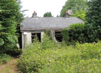 Thumbnail 3 bed bungalow for sale in The Bungalow, Rednagh Road, Aughrim, Wicklow