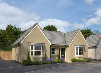 "Thumbnail 3 bed detached house for sale in ""Buckfastleigh"" at West Yelland, Barnstaple"
