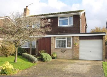 Thumbnail 4 bed detached house for sale in Poplar Way, Midhurst, West Sussex