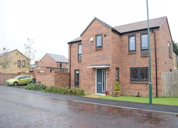 Thumbnail 4 bed detached house to rent in Robson Close, South Shields